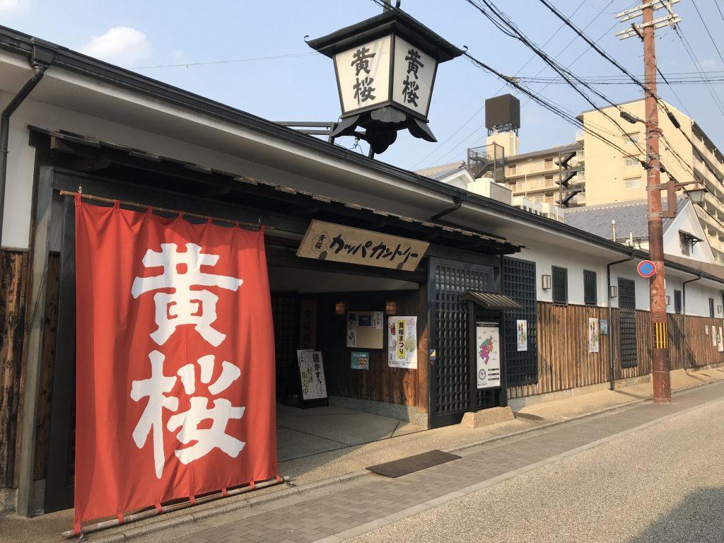 【京都市】酒造なのに河童推し『キザクラカッパカントリー』